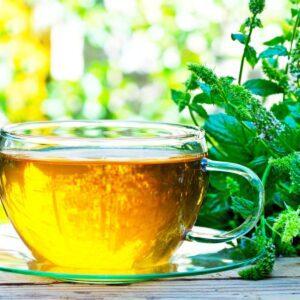 Tea for immune system