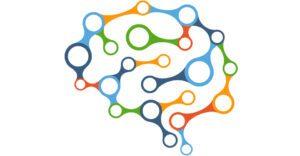 Donnelly artikkelikuva brain 2029391 1280