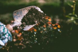 gardening hobbies for people with anxiety