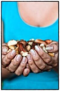 Shelled Brazil nuts