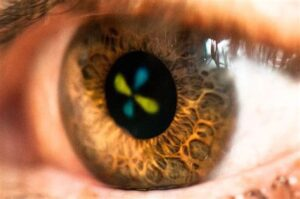 eye exercises