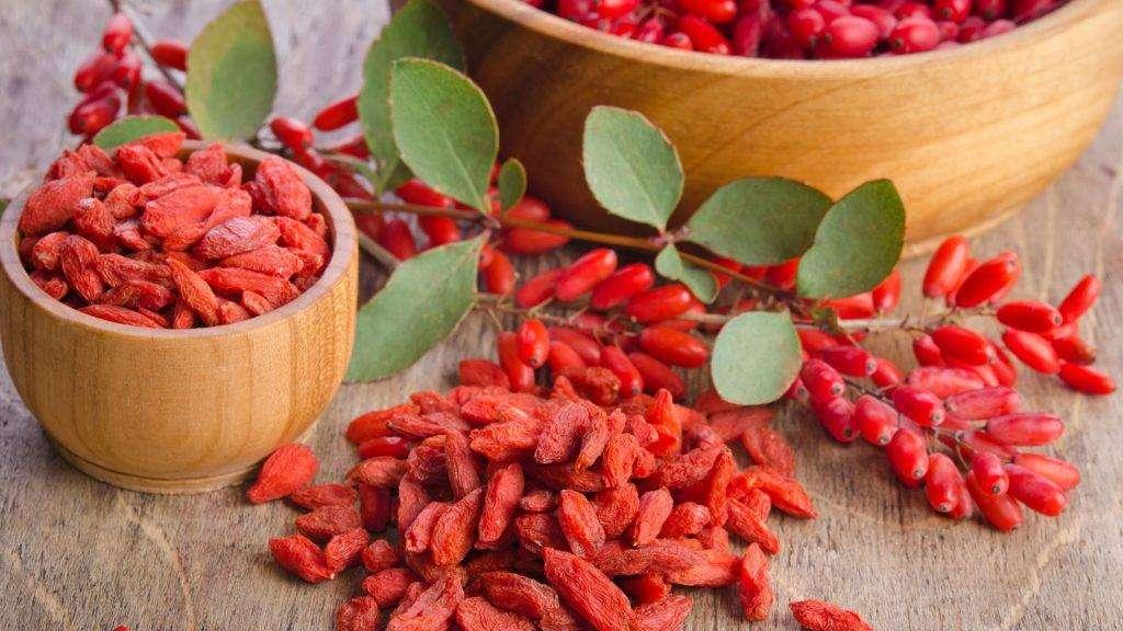 goji berry benefits cancer