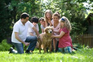What is Family Dynamics?