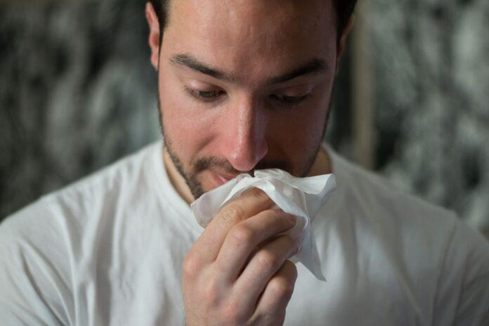 top 8 food allergens